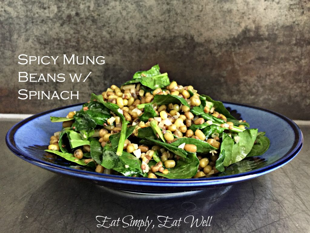 Mung-beans_spicy_logo_text_main_20160504